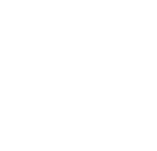 finish-icon